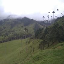 Audiovisuals : Un Volt per Colòmbia